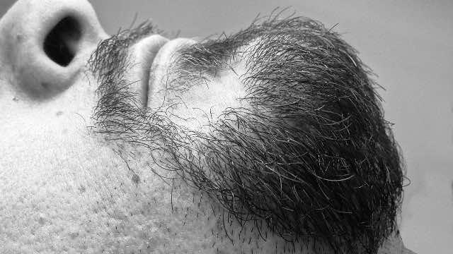bearded men rock