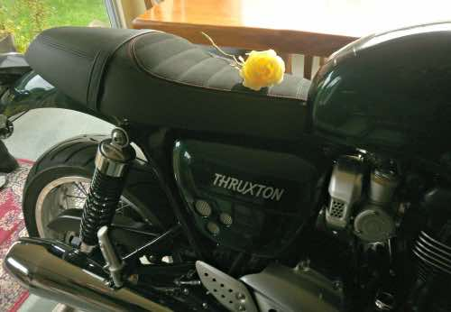 riding a motorbike that doubles as a vase