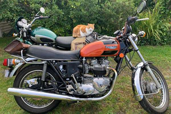 Vintage-Motorcycles-page