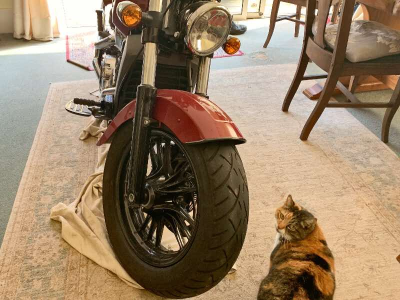 keep motorcycles warm in the house